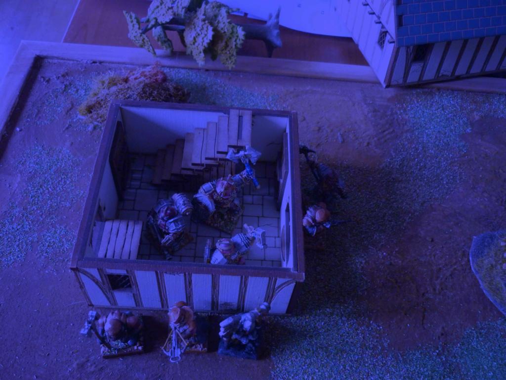 [Vanguard] Assaut Nocturne sur Vyvice - Morts vivants vs Nains P1350710