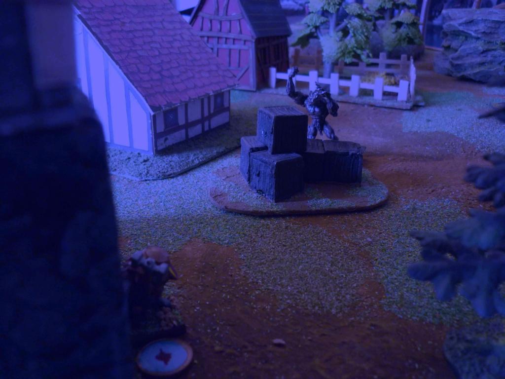 [Vanguard] Assaut Nocturne sur Vyvice - Morts vivants vs Nains P1350711