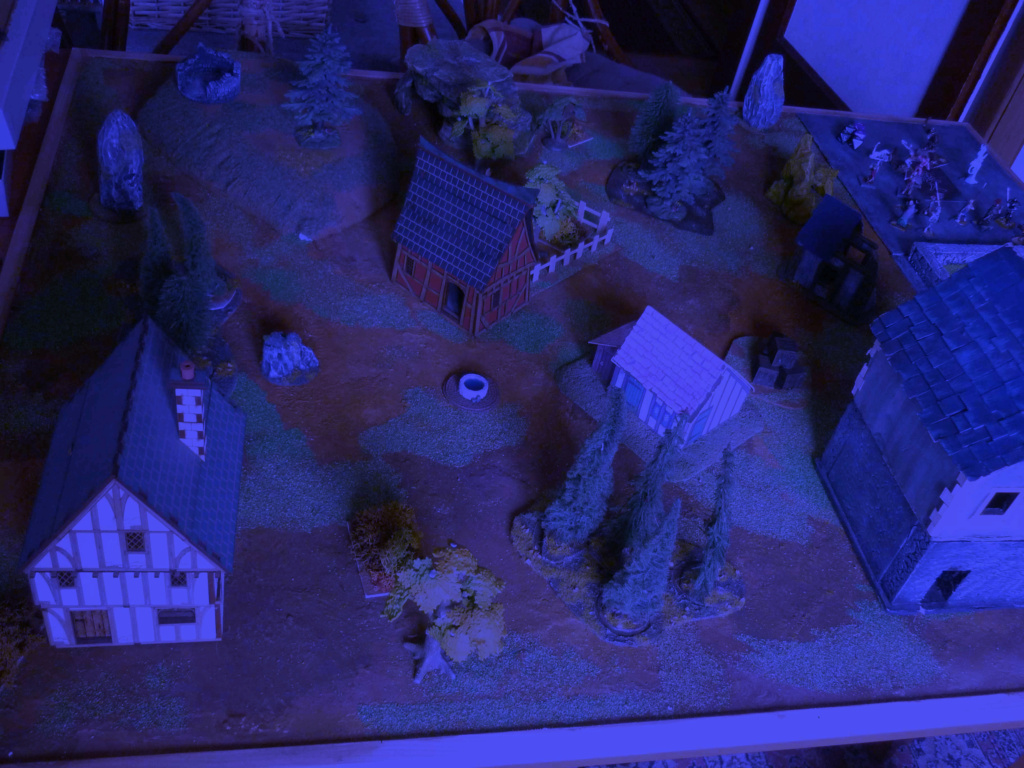 [Vanguard] Assaut Nocturne sur Vyvice - Morts vivants vs Nains P1350712