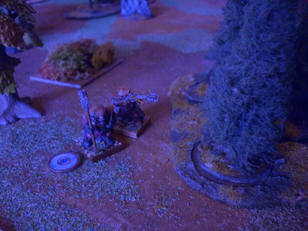 [Vanguard] Assaut Nocturne sur Vyvice - Morts vivants vs Nains P1350714