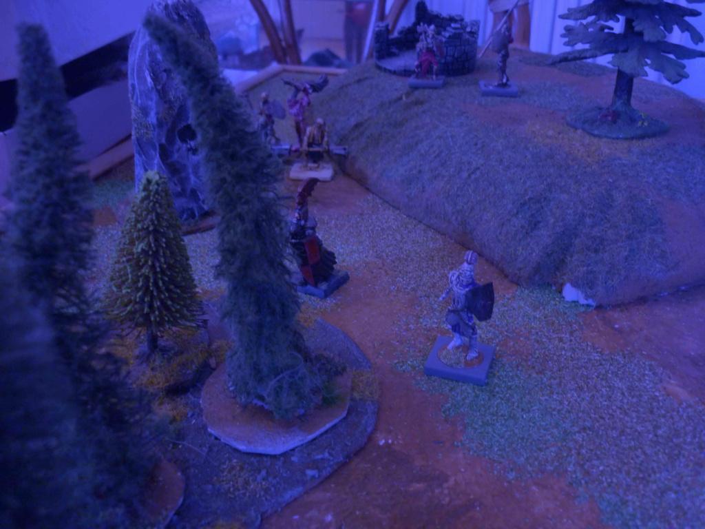 [Vanguard] Assaut Nocturne sur Vyvice - Morts vivants vs Nains P1350810
