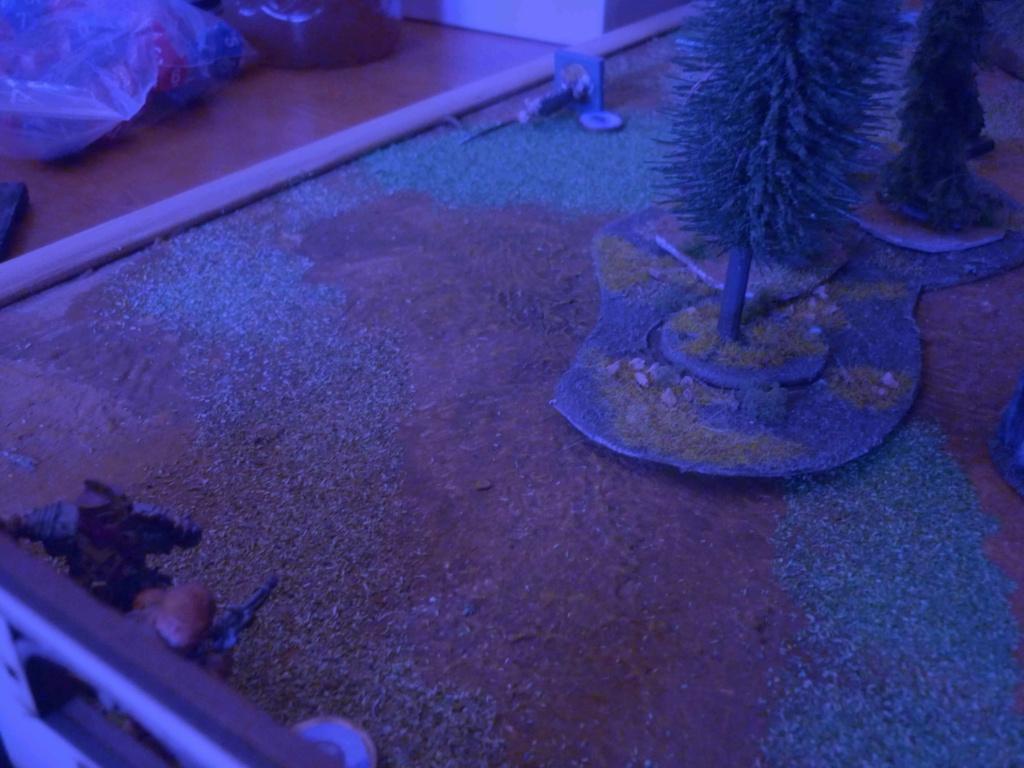 [Vanguard] Assaut Nocturne sur Vyvice - Morts vivants vs Nains P1350812