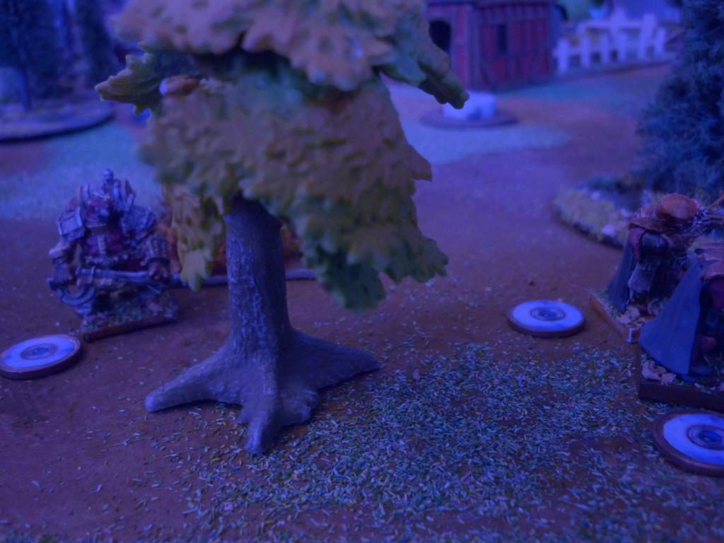 [Vanguard] Assaut Nocturne sur Vyvice - Morts vivants vs Nains P1350815