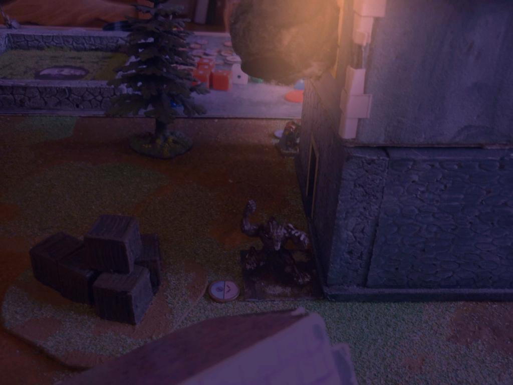 [Vanguard] Assaut Nocturne sur Vyvice - Morts vivants vs Nains P1350816
