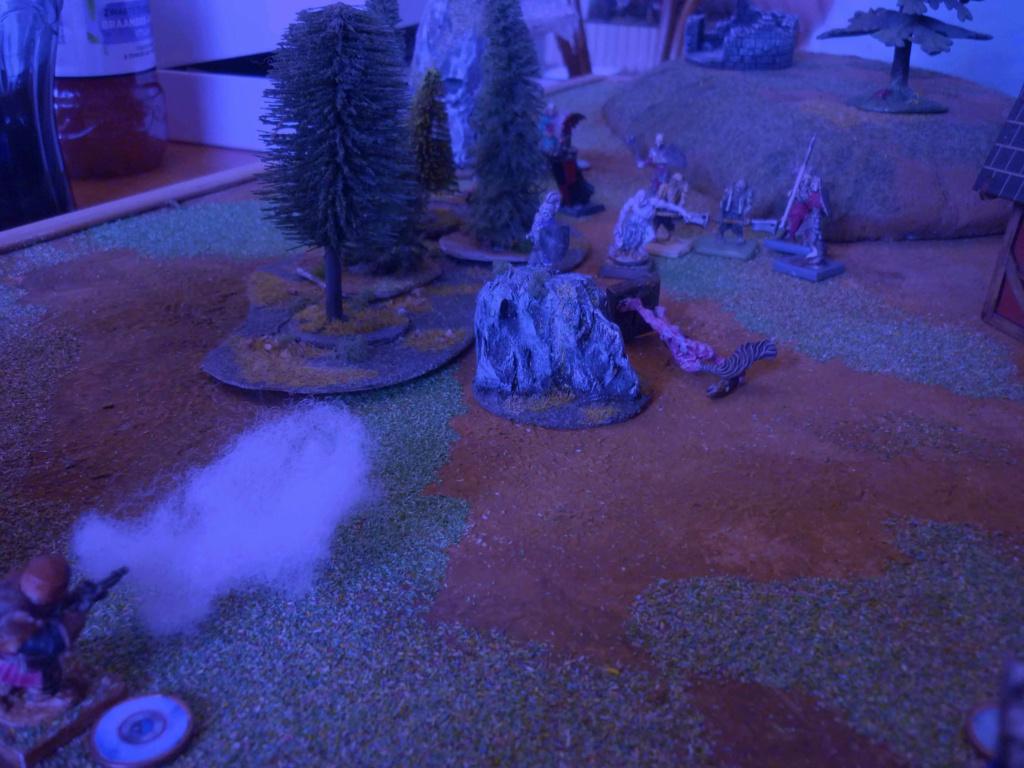 [Vanguard] Assaut Nocturne sur Vyvice - Morts vivants vs Nains P1350818