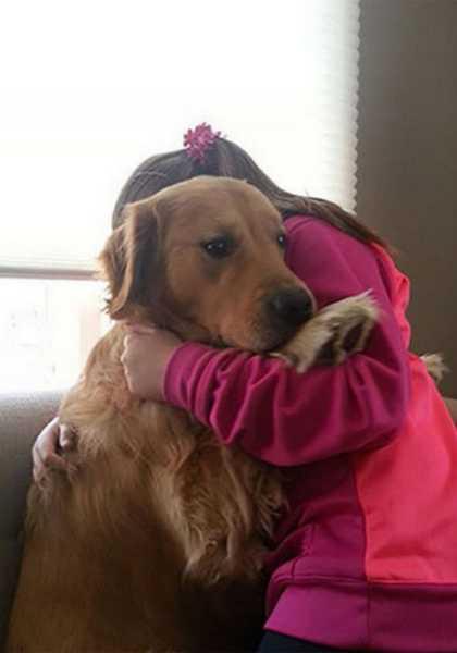 des animaux terrifiés par leur visite chez le vétérinaire 1013