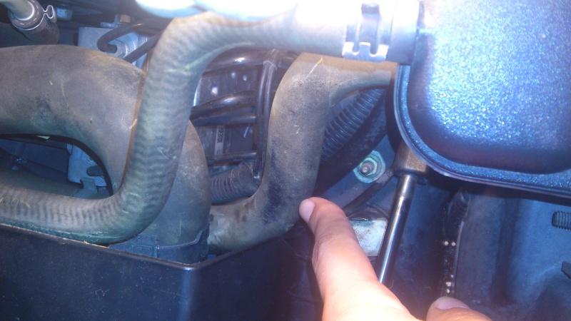 Pulizia manicotti motore Dsc_0710
