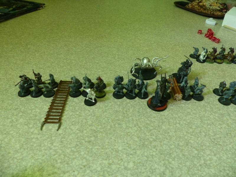 Elendil contre Sauron - Page 2 P1060711