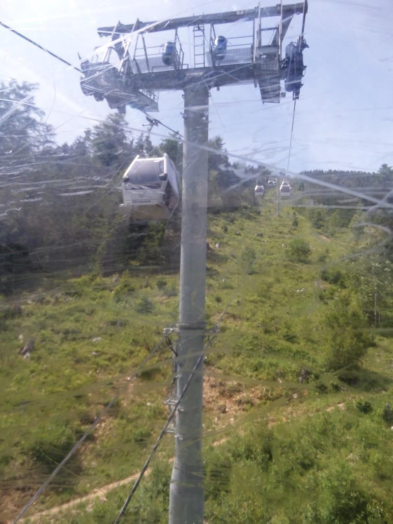 Télécabine à attache débrayable 10 places (TCD10) de Planpraz Sam_0435