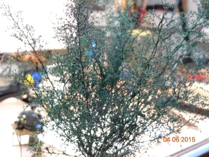 Jardinage.... Dsc01220