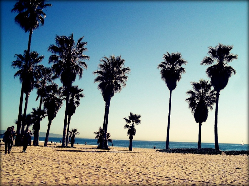 La plage ♥ Venice10