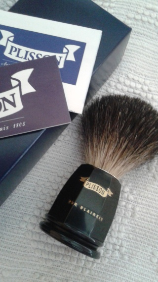 Plisson 20150524