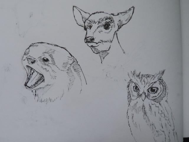 Les gribouilles d'Atna: objectif landscape et persos - Page 5 Dscn0610
