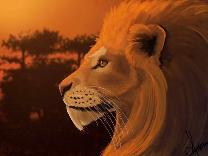 Les gribouillages d'Atna - Page 2 Lion_f10