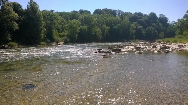 nymphe - Nymphe à vue sur la rivière d'Ain 11159811