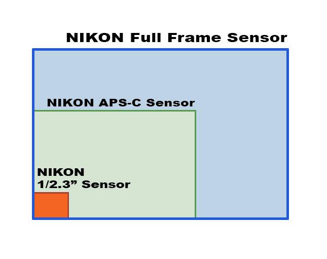 Off Topic Nikon P900  - Page 8 Sensor10