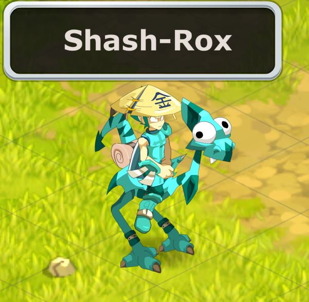 Candidature Shash-Rox Moi10