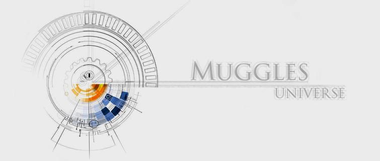 Muggle's Universe