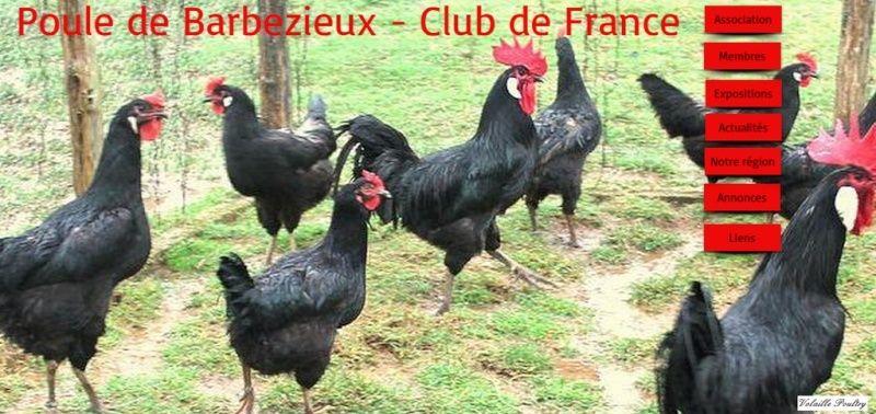 LA BARBEZIEUX Poule_25
