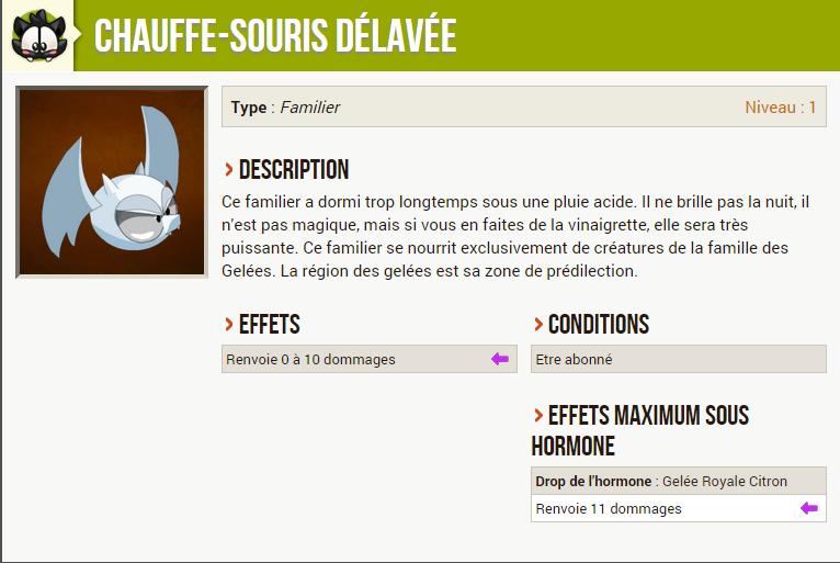 Chauffe-souris délavé Chauve10