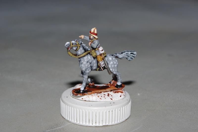 essai cheval gris pommelé sur figs 15 mm blue dragon Imgp7212