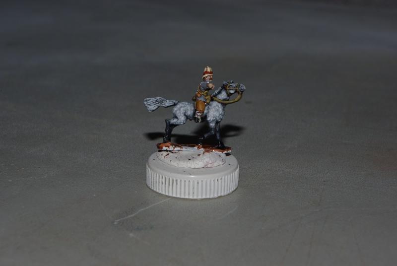 essai cheval gris pommelé sur figs 15 mm blue dragon Imgp7215