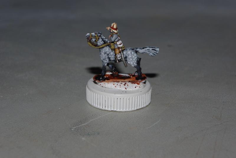 essai cheval gris pommelé sur figs 15 mm blue dragon Imgp7216
