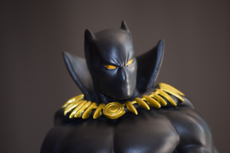 """PANTHERE NOIRE """"museum / modern"""" (Black Panther) Dsc_0012"""