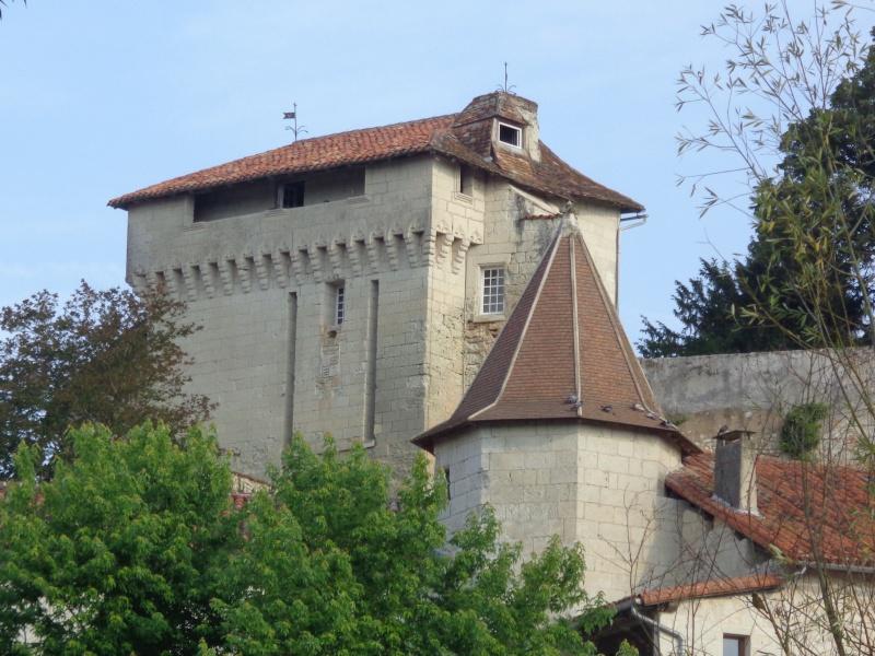 Charente (16) Aubeterre sur Dronne Dsc01512