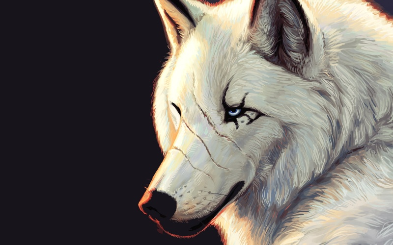 Barking At The Moon (dog roleplay) 69711110