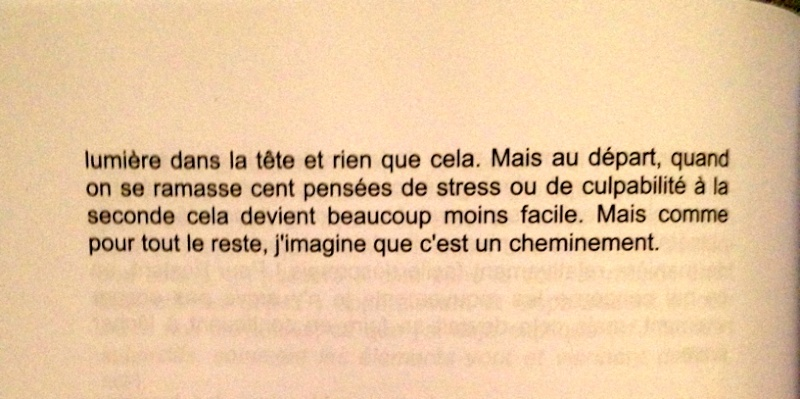 Action/Réaction ( extrait du livre de Christophe Allain ) Mental13
