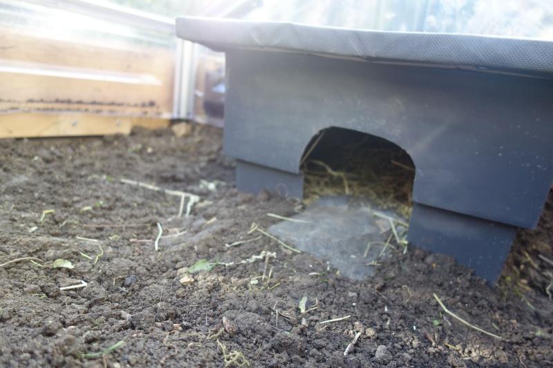 Hibernation d'une ah :) Dsc02611
