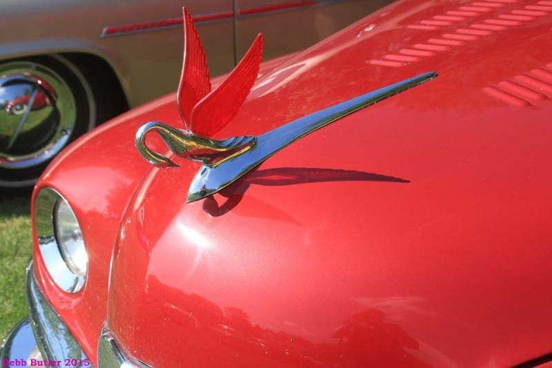 Packard custom & mild custom 11428511