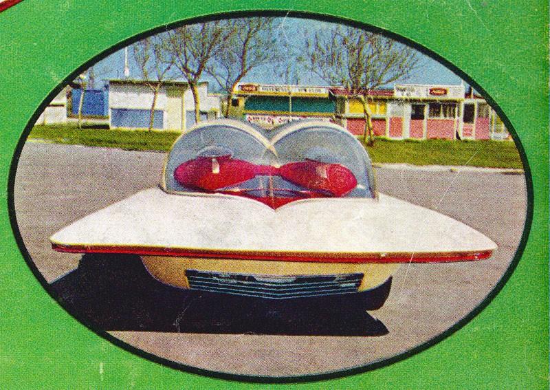 Futurista - Darrill Starbird 1226