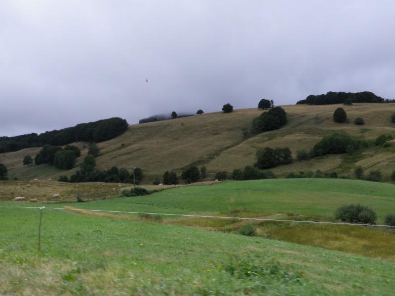 Entre Monts et Vallées  2015 Imgp9417