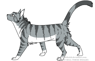 IceStorm-WindClan Cat110