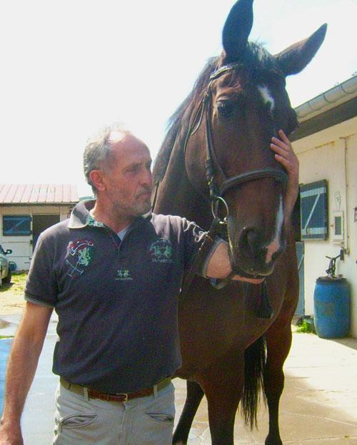 Zèbre et cheval, nous sommes cousins..... Zebra11