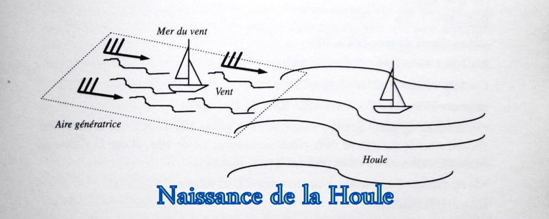 """Les cartes en bâtonnets, ou """"stick charts"""" des Iles Marshall (devinette dédiée à Northman) - Page 8 Houle10"""
