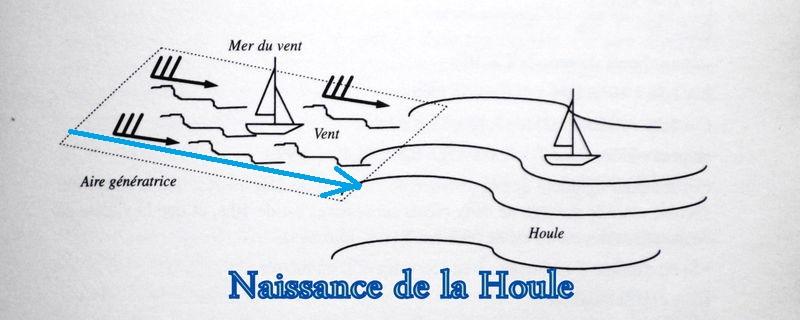 """Les cartes en bâtonnets, ou """"stick charts"""" des Iles Marshall (devinette dédiée à Northman) - Page 8 Houle210"""
