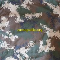 Les Forces armées de la république populaire de Chine. Capf310