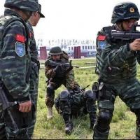 Les Forces armées de la république populaire de Chine. Capf410