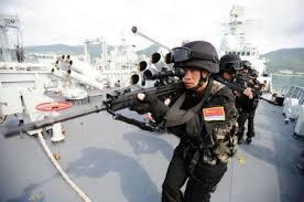 Les Forces armées de la république populaire de Chine. Plasf10