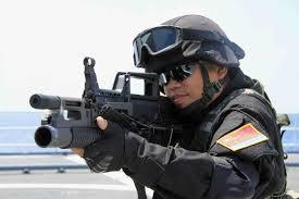 Les Forces armées de la république populaire de Chine. Plasf310