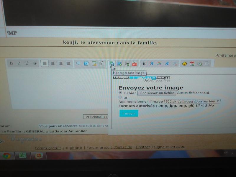 comment insérer une image Img_2011