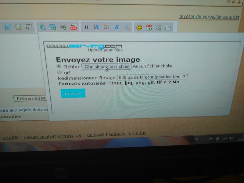 comment insérer une image Img_2012