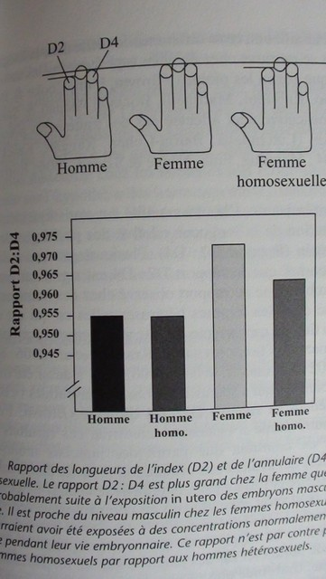 Etre/Devenir Lesbienne - Page 3 Dsc00010
