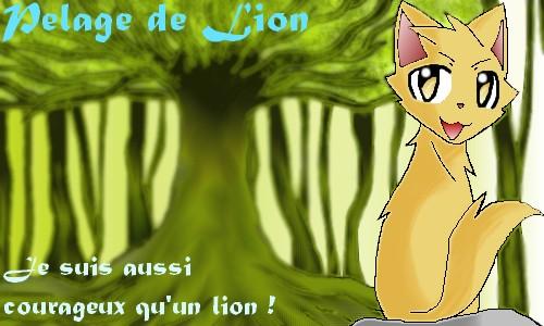Nyan cat's workshop Pelage12