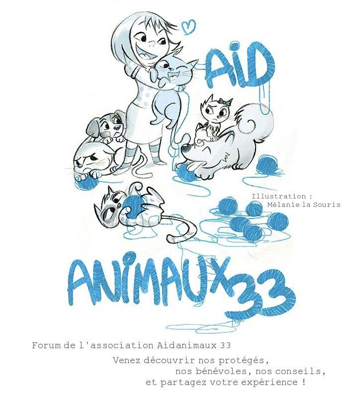 Aidanimaux 33