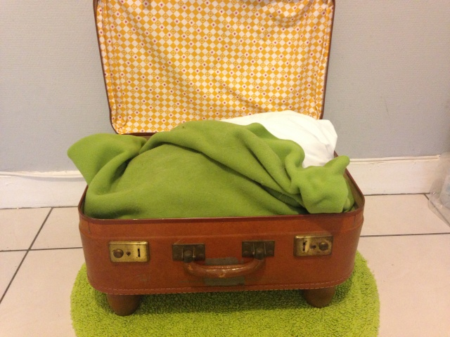 DIY - Panière valise pour chat et petits chiens Img_0619