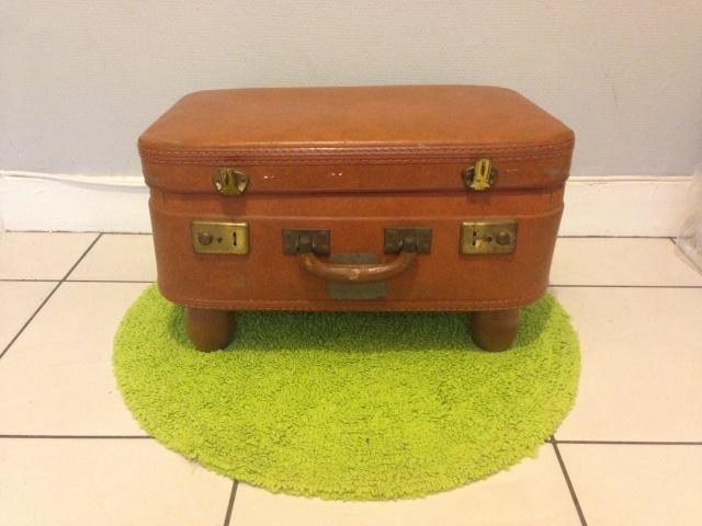 DIY - Panière valise pour chat et petits chiens Img_0621